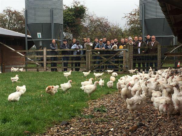 Chefs on Caldecott's Free Range Poultry Farm